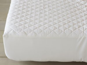 Coyuchi Organic Cotton Mattress Pad