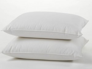Coyuchi Feather/Down Pillow