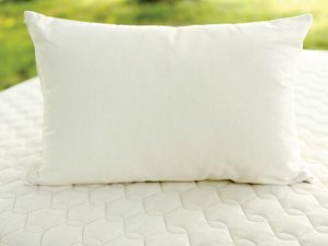 Savvy Rest Wool & Latex Pillow